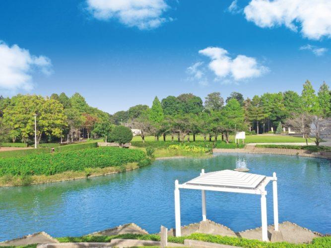 メモリアルパーク緑の丘 イメージ6