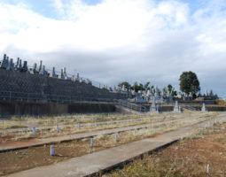 吉祥寺 新東墓地