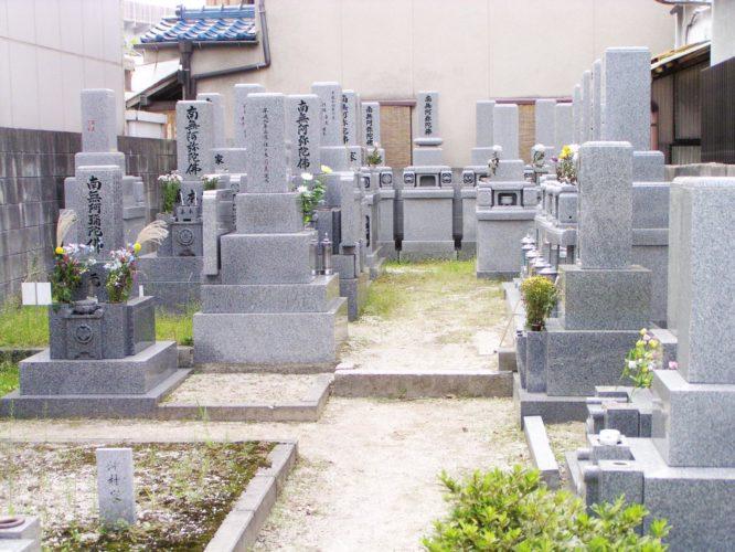 光明院墓地 イメージ2
