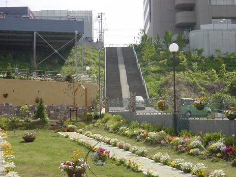 メモリアルパーク南横浜 イメージ3