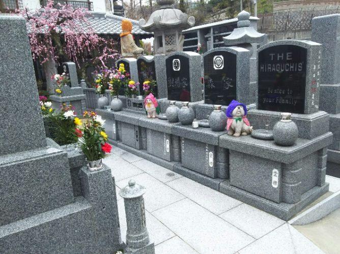 泰聖寺墓地 イメージ1
