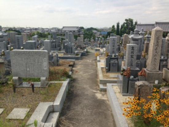 菅生墓地 イメージ1