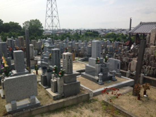 菅生墓地 イメージ2