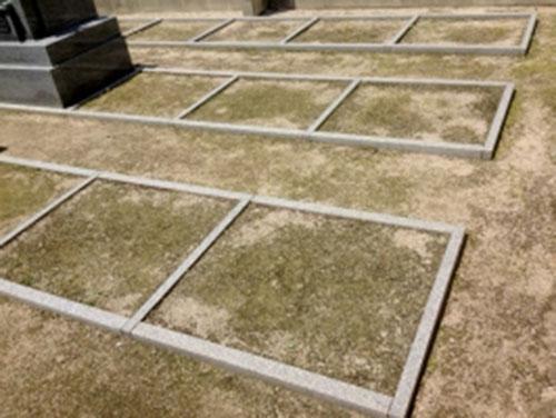 延命院境内墓地 イメージ3