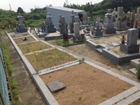 菅生墓地 イメージ3
