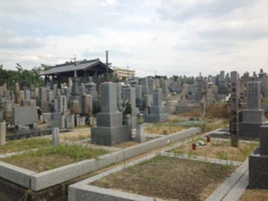 菅生墓地 イメージ4