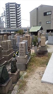 放出墓地 イメージ4