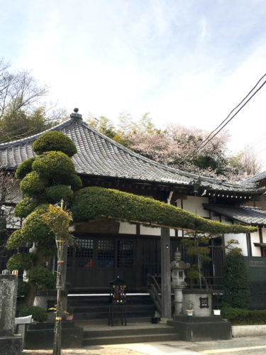 松戸大橋樹木葬墓地 イメージ7
