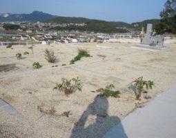新田岡山墓地