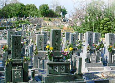 法融寺墓地 イメージ2