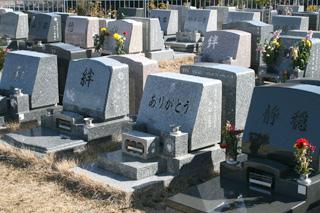 武蔵メモリアルパーク イメージ6