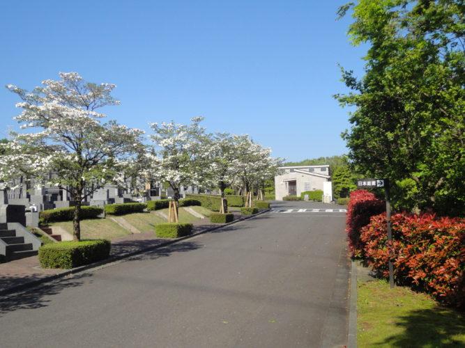 東京多摩霊園 イメージ4