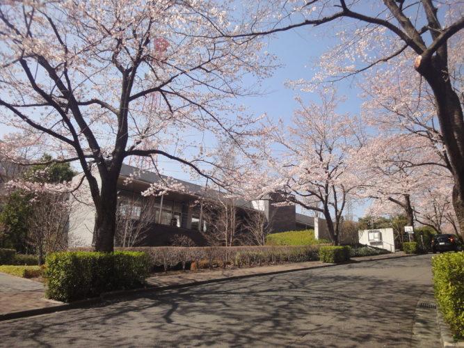 東京多摩霊園 イメージ2