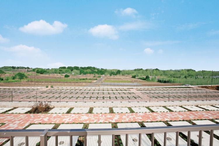 メモリアルパーク緑の丘 イメージ3