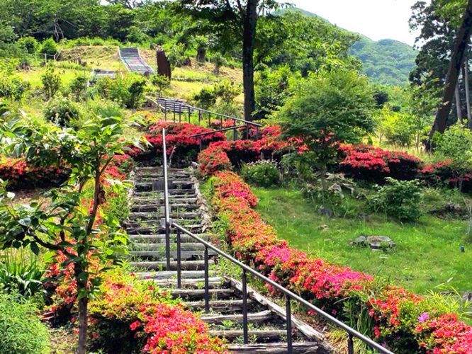 千の風みらい園 イメージ2