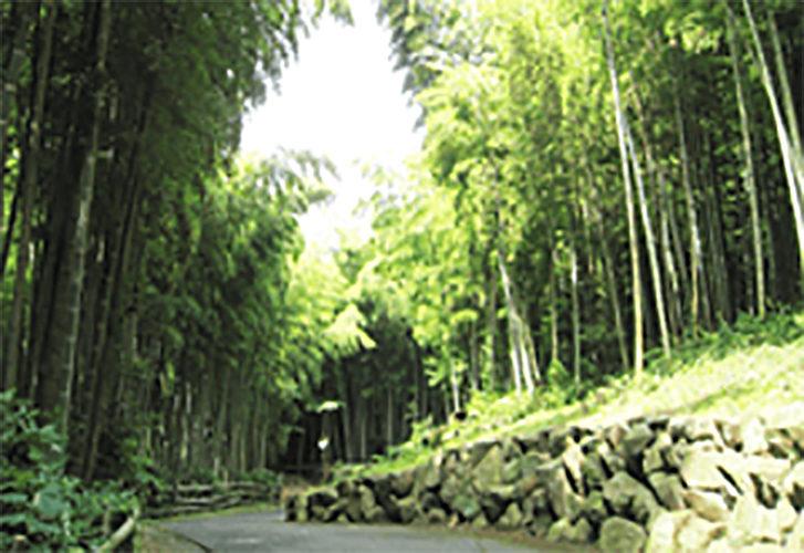 円海山メモリアル清浄園 イメージ2