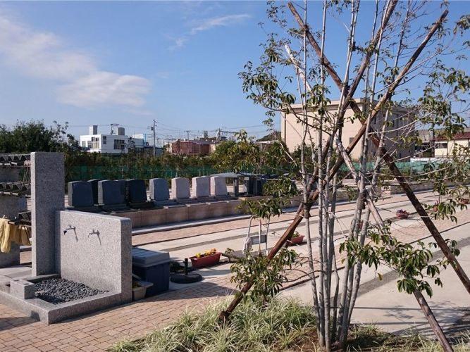櫻乃里ふなばし聖地 イメージ2