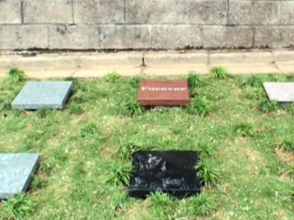 花見山 奥の院 樹木葬の杜 イメージ8