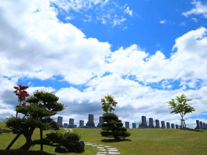 真駒内滝野霊園 やすらぎの里 ラベンダーガーデン イメージ3