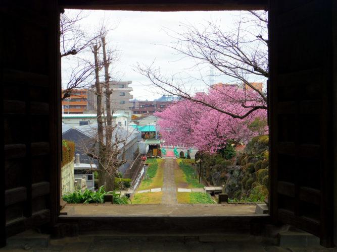 西方寺 のうこつぼ イメージ5