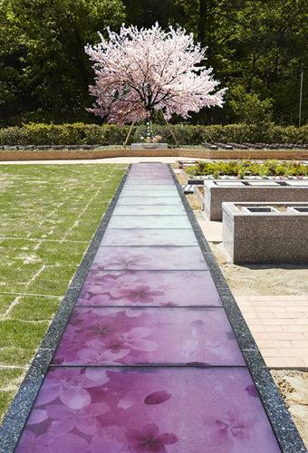 小川渓メモリーズパーク イメージ5