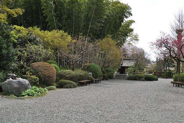 龍散寺 「陽光の杜」 イメージ8