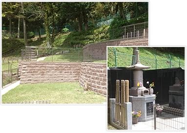 龍散寺 「陽光の杜」 イメージ2